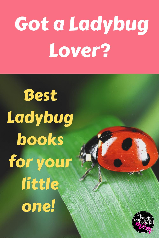 Best Baby Ladybug Books